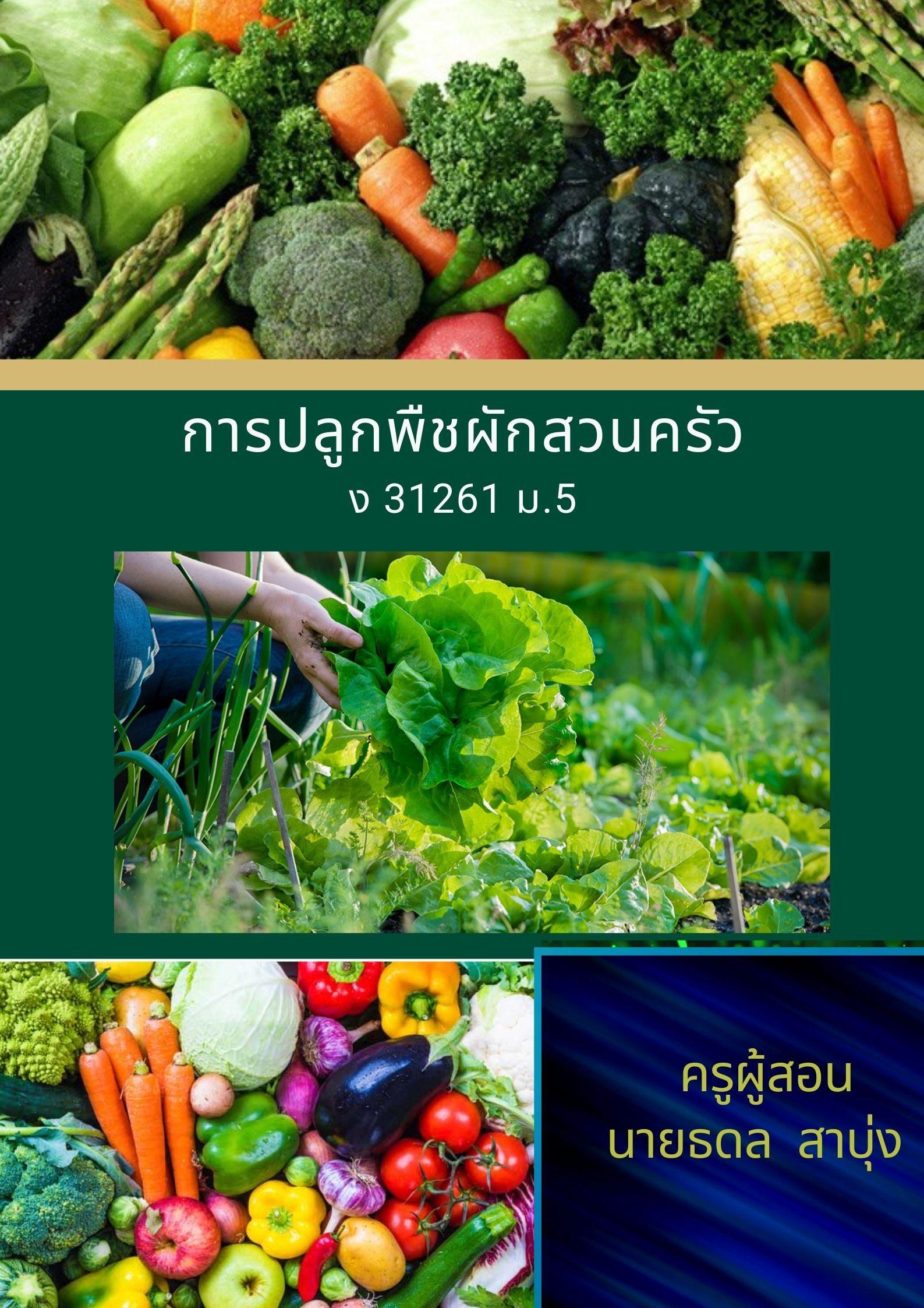 การปลูกพืชผักสวนครัว ม.4 เทอม 1